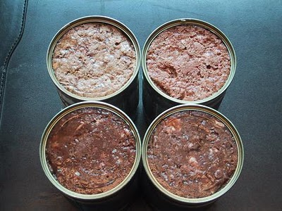 Cat Food Raw Vs Canned